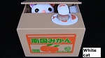 Genuine Kitty Cat Piggy Bank Coin Deposit Itazura Japan